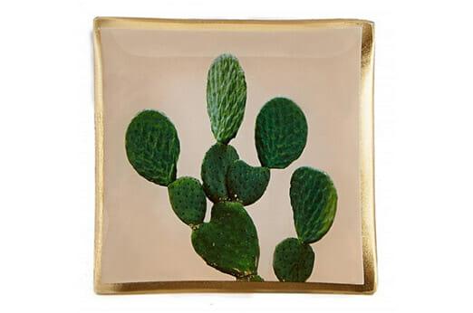 Villa Dekoteller Kaktus
