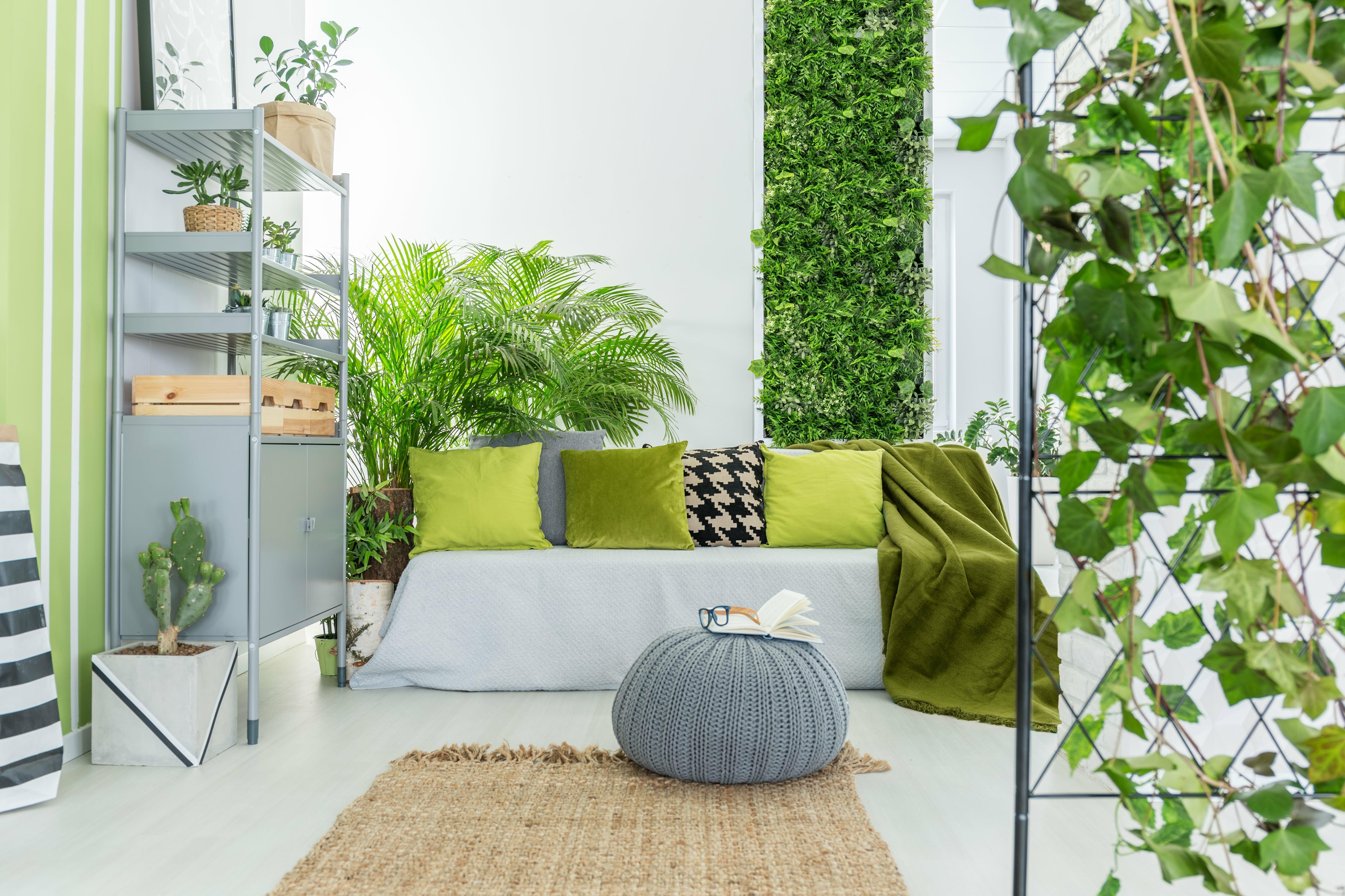 Urlaubsratgeber für Pflanzen Galerie 2