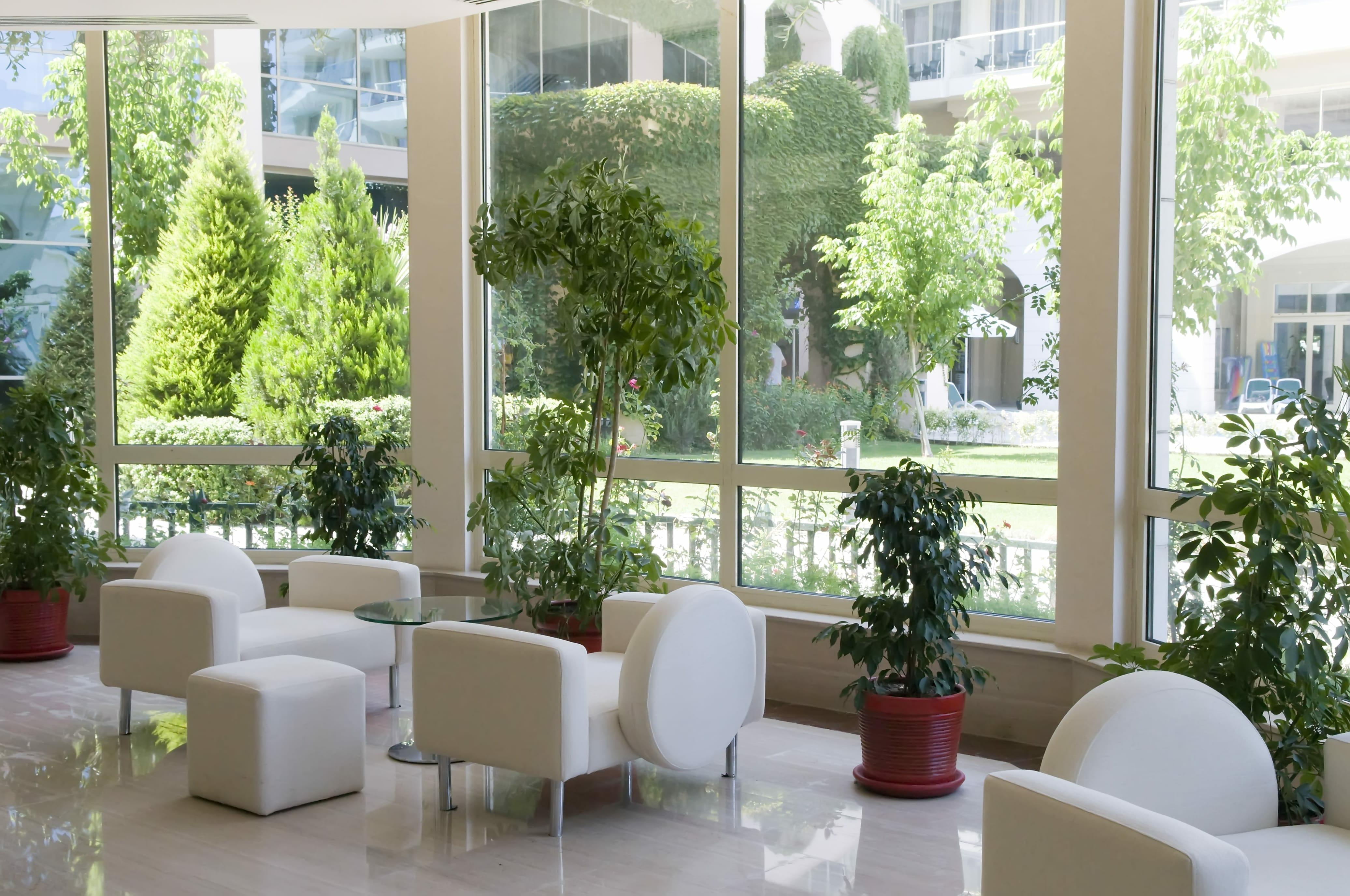 Urlaubsratgeber für Pflanzen Vorschau