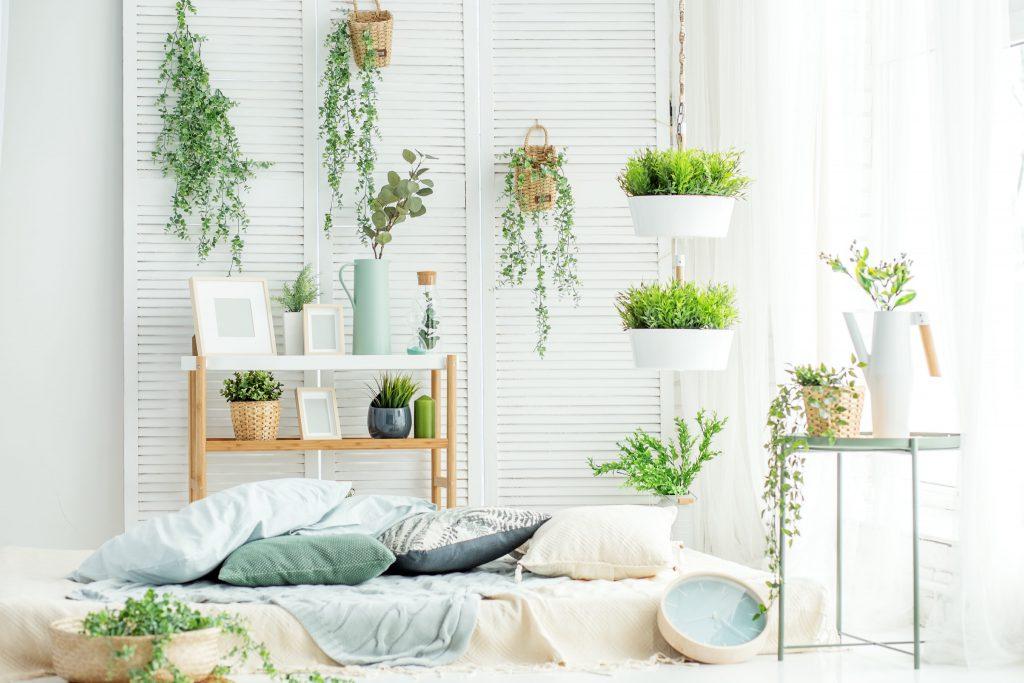 Pflanzen-im-Schlafzimmer-Galerie2