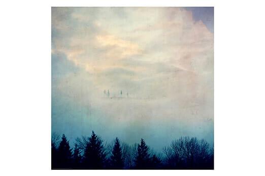 Bild Himmel und Wald