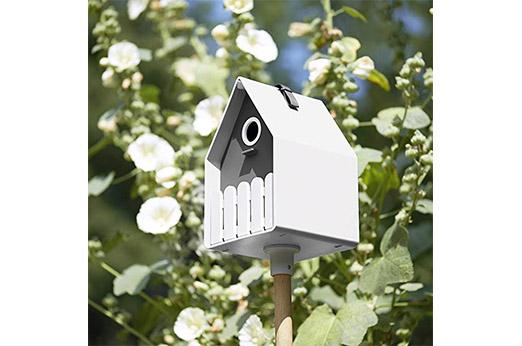 Vogelhaus Landhaus/Skandi stil grau weiß