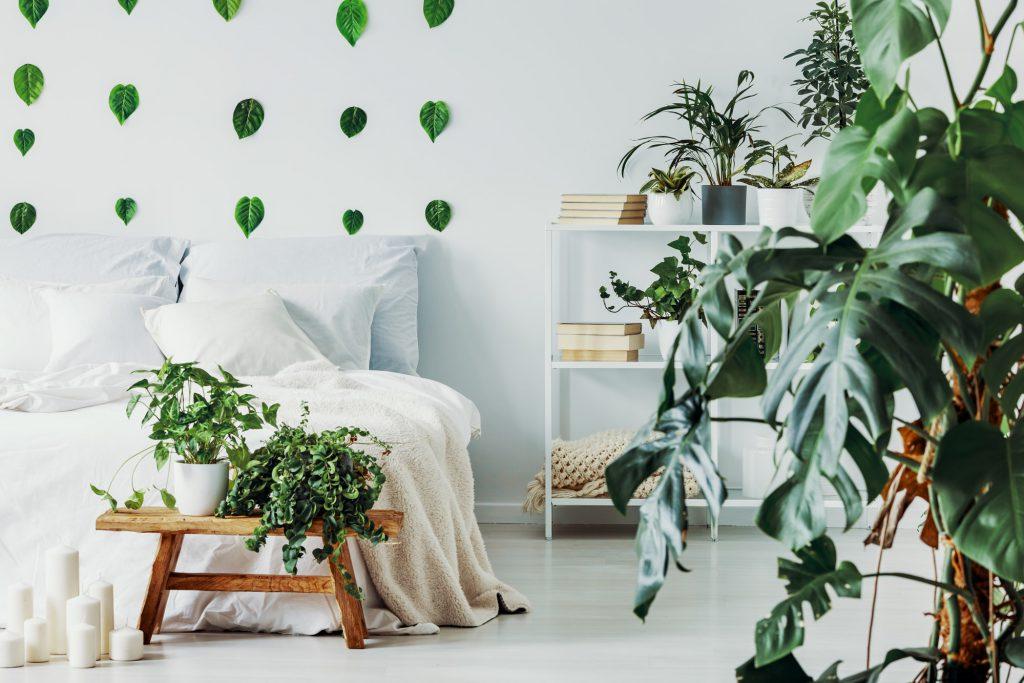 Indoor Garten Galerie 3
