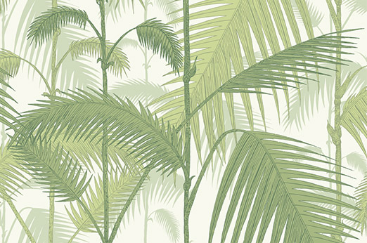 Palm Jungle Tapete grün