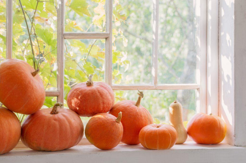 Herbstdeko basteln für Fenster Galerie 3