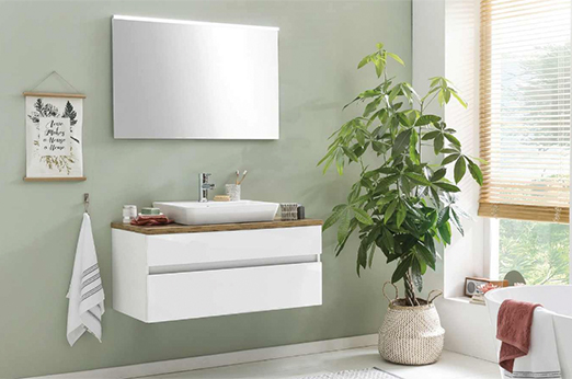 Badezimmer-Kombination Zierker See