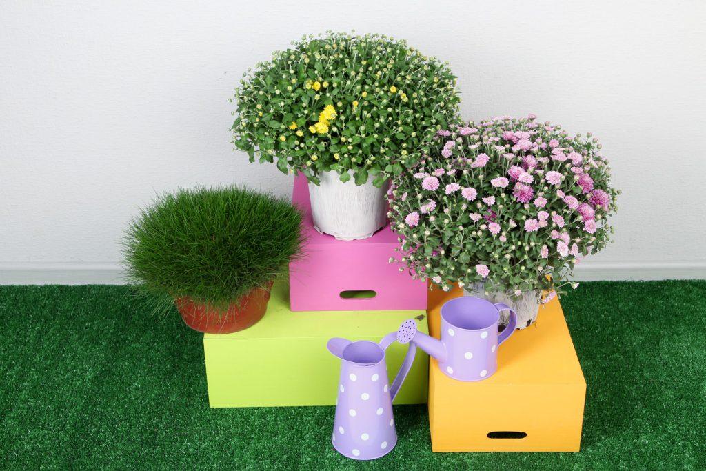 Blumen und Kräuter als selbstgemachte Ostergeschenke