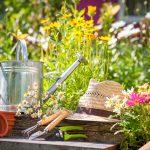 Kanne und Hut zwischen Pflanzen im Frühling