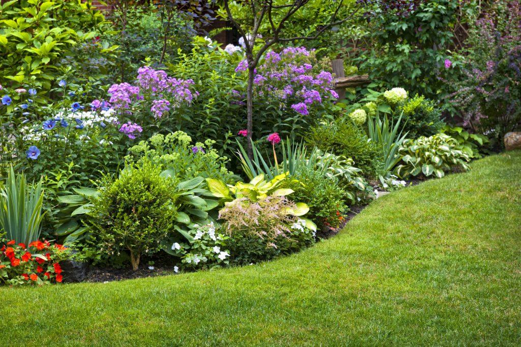 insektenfreundlicher Garten mit großen Blumenstauden