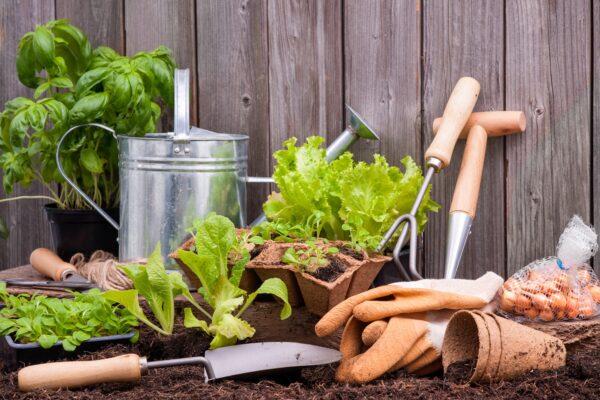Gartengeraete Vorschau
