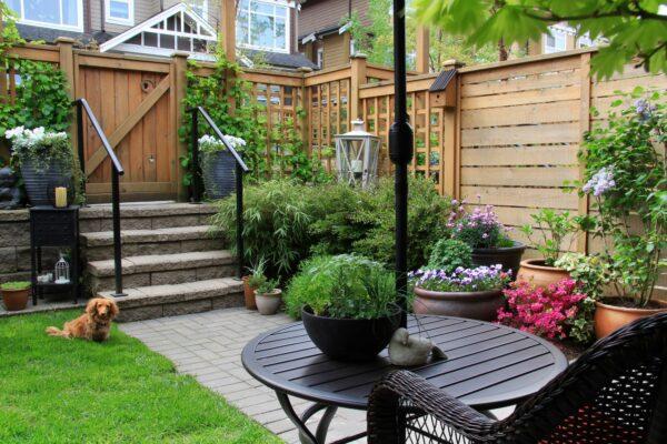 Kleiner Garten Vorschau