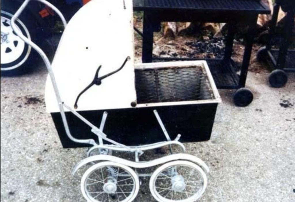 grill-kinderwagen 2