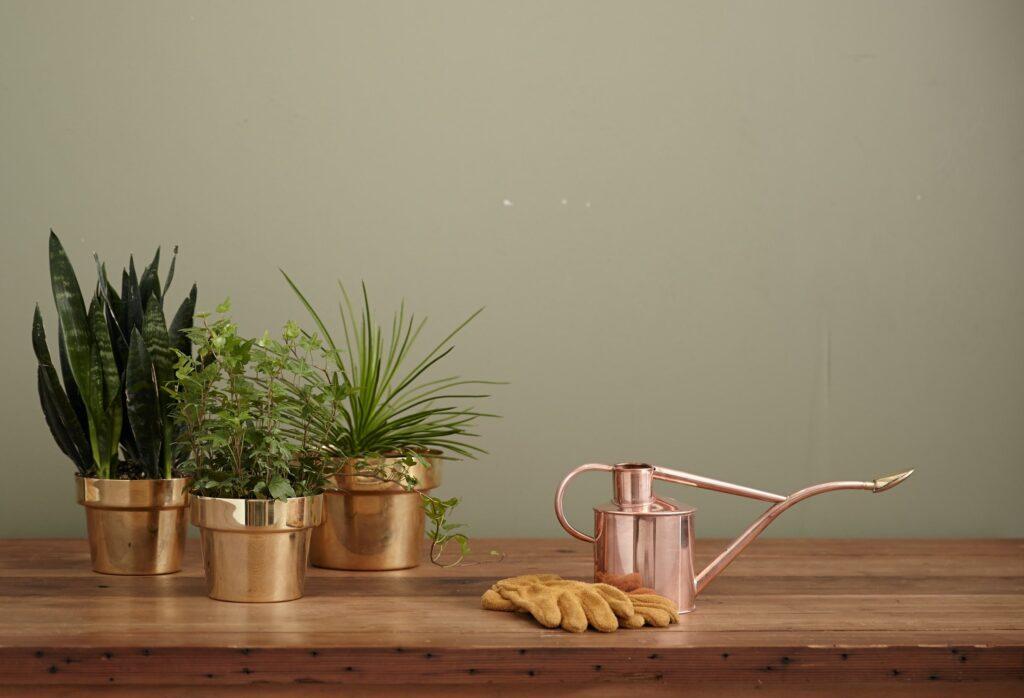 Accessoires für Pflanzenliebhaber Galerie1